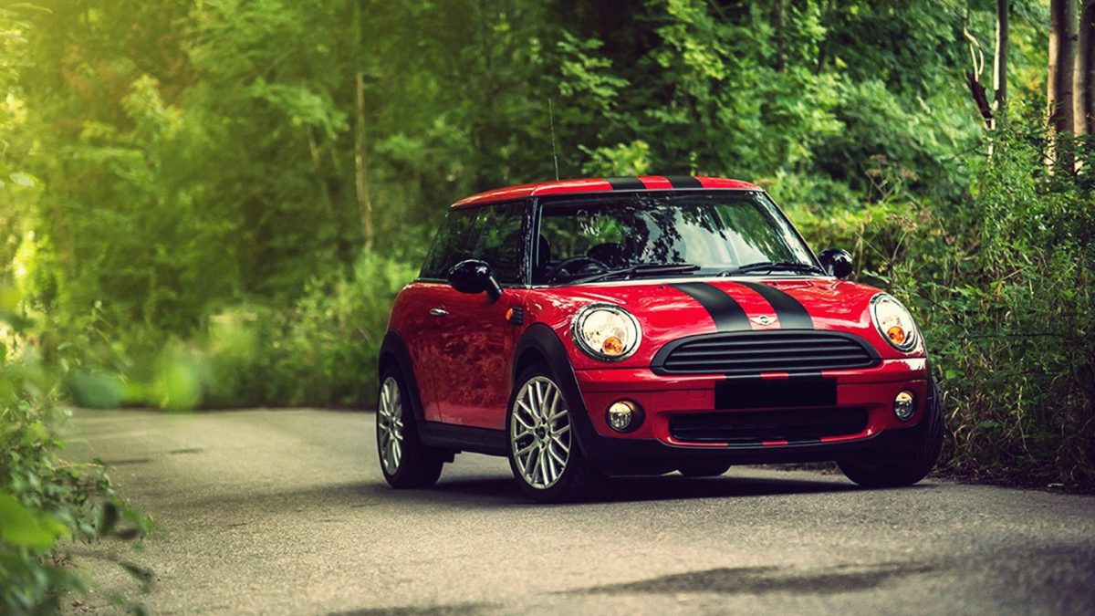 Striping Mini Cooper